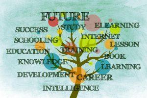 Blog Wim Creating Insights